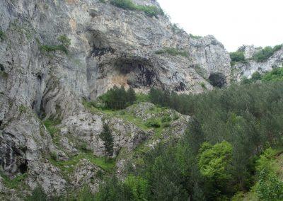 landscape_107