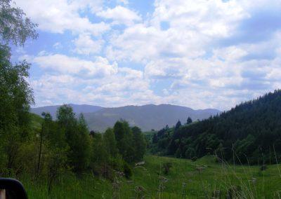 landscape_24